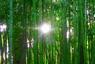 Салфетка из бамбука.